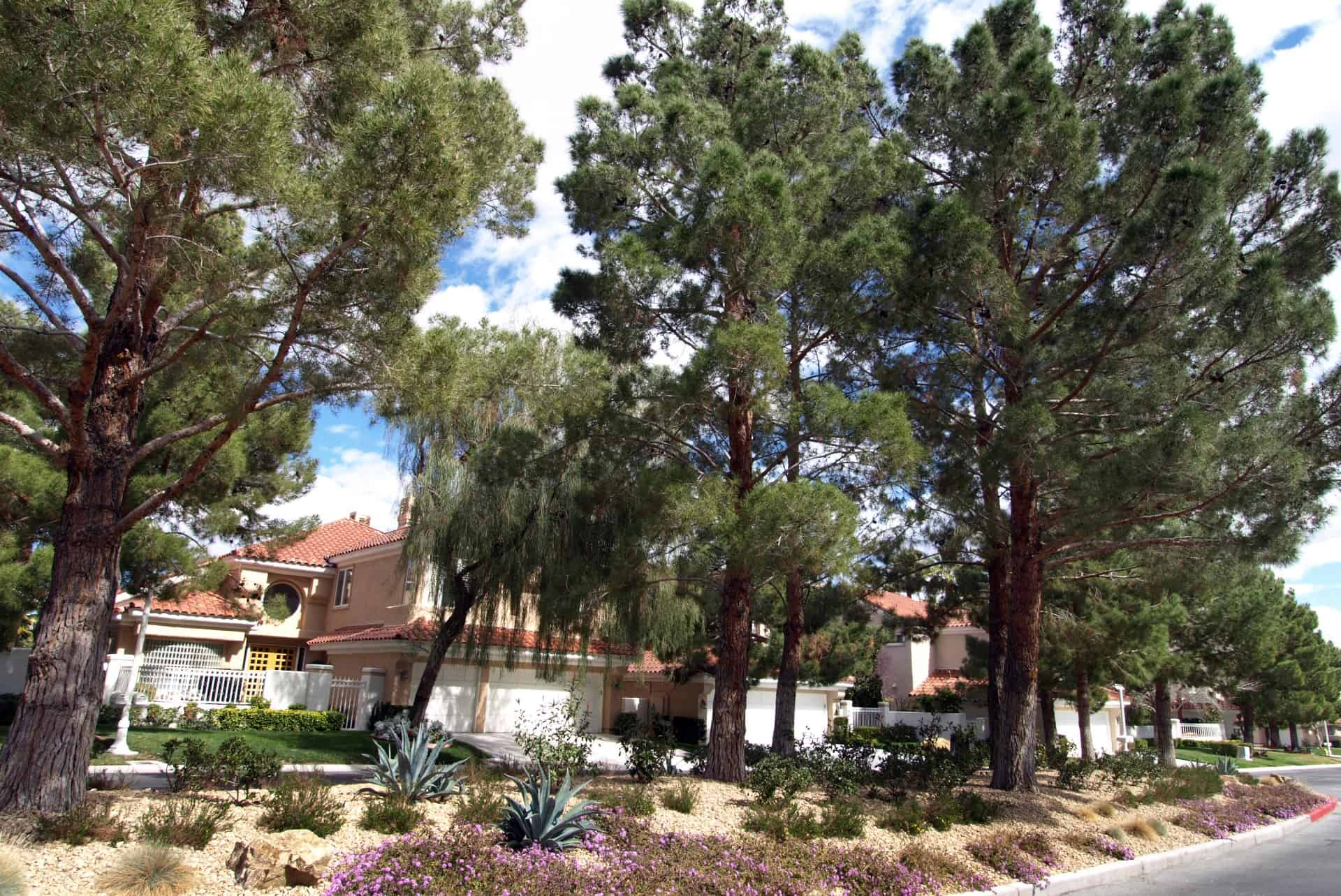 spanish-trail-rob-jensen-company-guard-gated-real-estate-summerlin-las-vegas-henderson-12