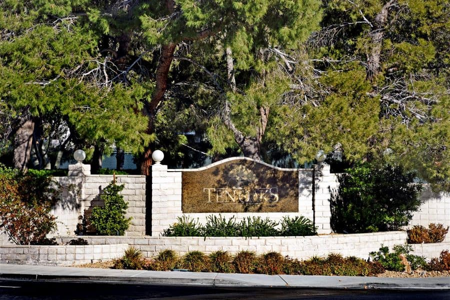 ten-oaks-rob-jensen-company-guard-gated-real-estate-summerlin-las-vegas-henderson-2